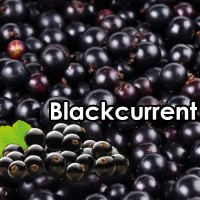 Blackcurrant 10ml High Vg By Vjuice