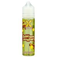 Bubblegum JuicyFroot By X Series 50ml Shortfill