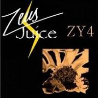 ZY4 (50/50)